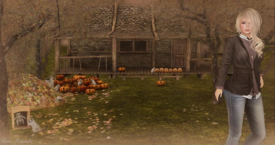 Autumn guests