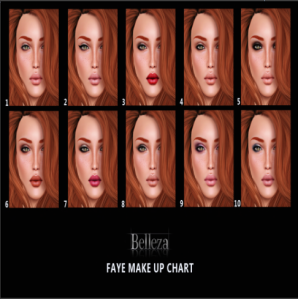 Faye makeup chart