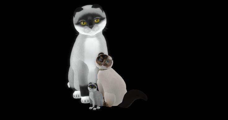 kitty family_001