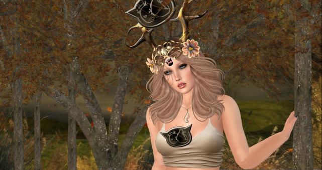 Autumn trees_003