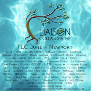 The Liaison Collaborative - June - Newport