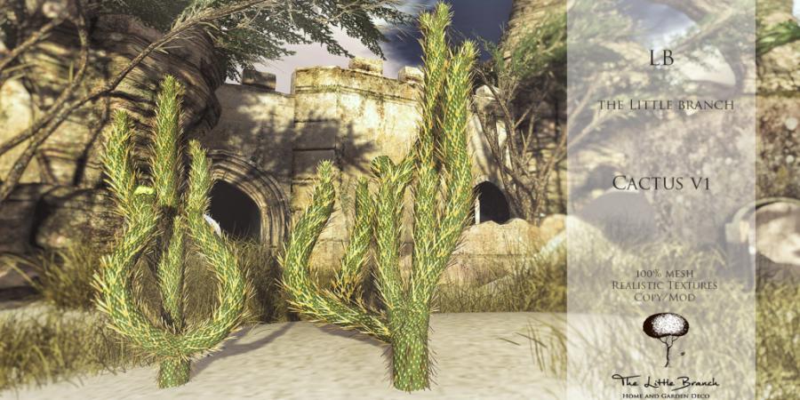 LB Cactus V1