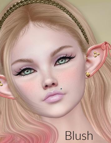fest blush